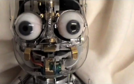 A cute bug eyed robot. OK it's not cute. It's terrifying!!